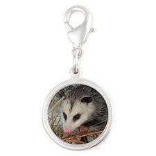Snow Possum Charms
