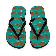 Kiwis Flip Flops