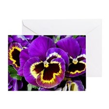 Beautiful purple pansy Greeting Card