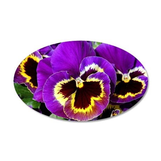 Beautiful purple pansy 35x21 Oval Wall Decal