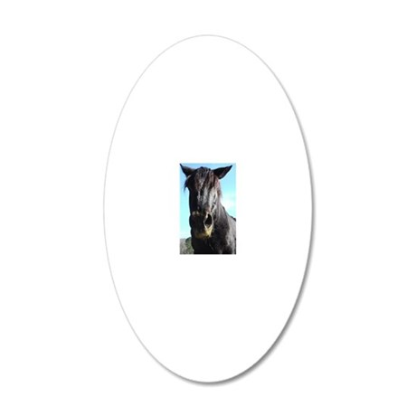Black Rescued draft Horse 20x12 Oval Wall Decal