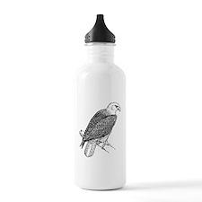 Bald Eagle Sketch Sports Water Bottle