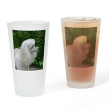 Abbey air scenting Drinking Glass