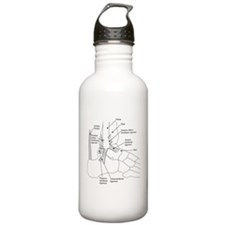 dr Ankle large Water Bottle