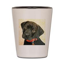 Black Labrador Puppy Portrait with Peac Shot Glass