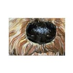 Airedale Terrier Dog Nosey Rectangle Magnet
