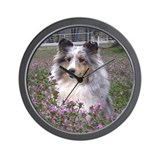 Wall Clock - Blue Merle Sheltie