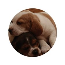 "Two Beagle Puppies 3.5"" Button"