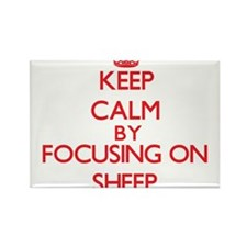 Keep calm by focusing on Sheep Magnets