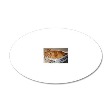 Mail Cat 20x12 Oval Wall Decal