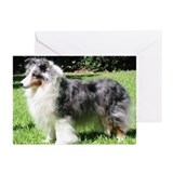 Greeting Cards (Pk of 10) - Blue Merle Sheltie