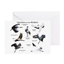 Cranes of the World Greeting Cards (Pk of 20)