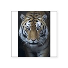 Siberian Tiger Rectangle Sticker
