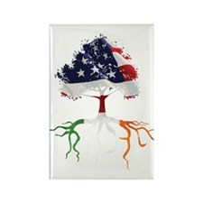 USA Irish Roots Rectangle Magnet