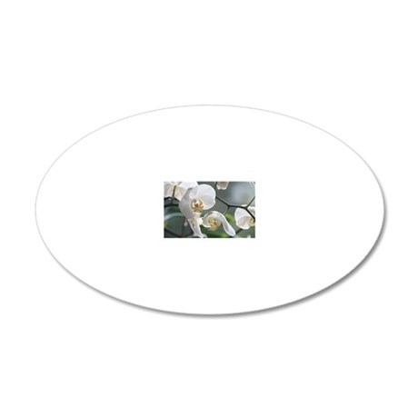 Orchid011 20x12 Oval Wall Decal