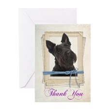 Scottie Thank You Cards