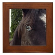 Horse Framed Tile