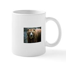 bearphto.jpg Mugs