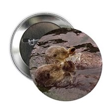 "Sea Otters Holding Hands 2.25"" Button (10 pack)"