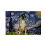 Starry / Boxer Rectangle Magnet (10 pack)