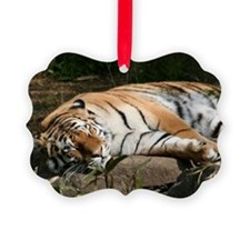 Tiger020 Ornament