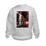 5.5x7.5-Accolade-LABTRIO.png Kids Sweatshirt