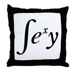 Sexy Integral Throw Pillow