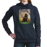 SPRING-Newfie-Brown... Hooded Sweatshirt