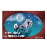 Appaloosa Horse by Moonlight Postcards (Pkg of 8)