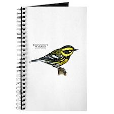 Townsend's Warbler Journal