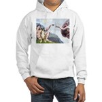 Creation of the Boxer Hooded Sweatshirt