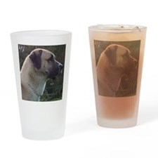 anatoilian shepherd Drinking Glass