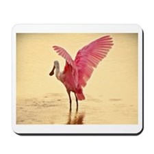 Florida Birds Mousepad