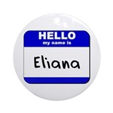 hello my name is eliana  Ornament (Round)
