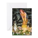 Fairies & Boxer Greeting Cards (Pk of 10)
