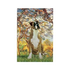 Spring with a Boxer Rectangle Magnet (10 pack)