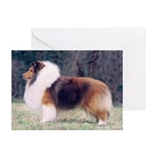 Greeting Cards (Pk of 10) - Sable Sheltie