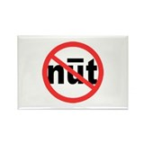 No Newt 2008 Rectangle Magnet (100 pack)