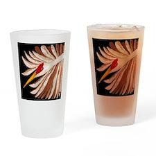 Love Sandhill Cranes Love Birds Drinking Glass