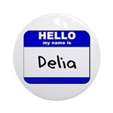 hello my name is delia  Ornament (Round)