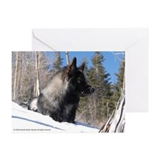 Cold Mountain Greeting Cards (Pk of 10)