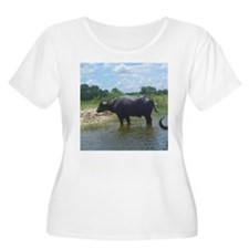 water buffalo T-Shirt