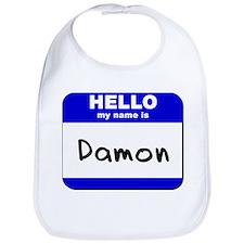 hello my name is damon  Bib