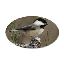 Black- Capped Chickadee Wall Decal