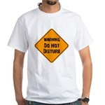Take Heed of This White T-Shirt