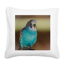 Blue Budgie Square Canvas Pillow