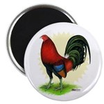 Red Gamecock2 Magnet
