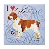 Welsh Springer Tile Coaster
