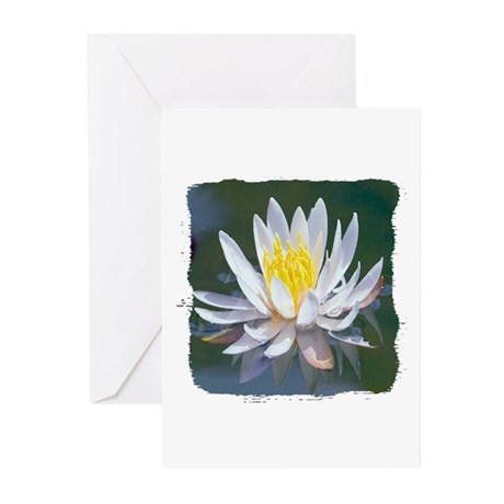 Lotus Blossom Greeting Cards (Pk of 10)