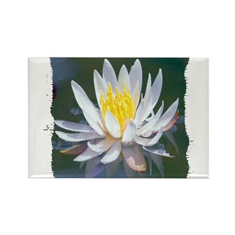 Lotus Blossom Rectangle Magnet (100 pack)